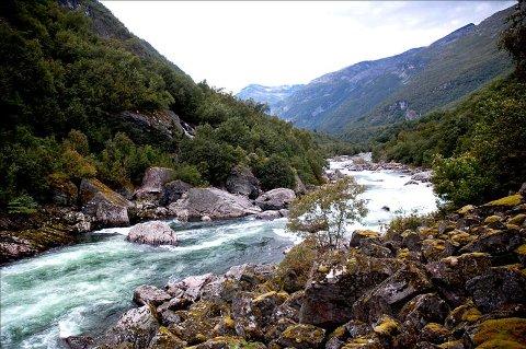 Skogs vei : Sweco Norge ønsker å utbedre en gammel skogsvei fra Vermøya for å få fram borerigg til damstedet i Snøvasfossan.