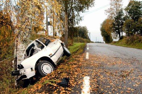 BRUTALT: Bilen ble knust mot trestammen, tett inntil riksveien. FOTO: TANJA IRÉN BERG