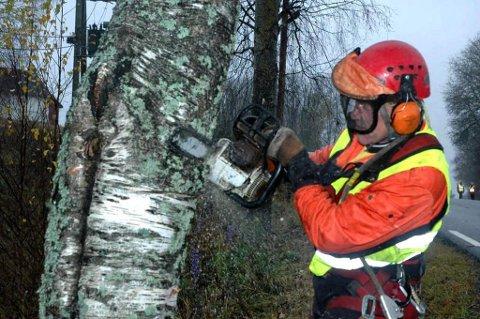 DØDSTREET: Rune Johnsen felte selv treet som datteren kjørte inn i. ? Dette treet skulle ingen igjen kjøre seg i hjel mot, forteller han. FOTO: MAGNAR HARALDSEN/EIDSVOLL ULLENSAKER BLAD