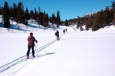 Nordmenn er født med ski på beina, sies det. Og vi har jammen mange ski-ord også.