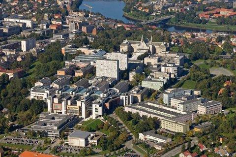 NTNU er blant norske universiteter og høyskoler som må satse på utlendinger for å få fylt opp akademiske stillinger.