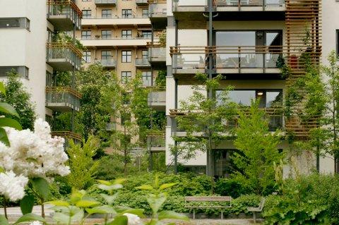 Det er tid for å dele ut Statens Byggeskikkpris igjen. Her en av de tidligere boligvinnerne: Pilestredet Park i Oslo.
