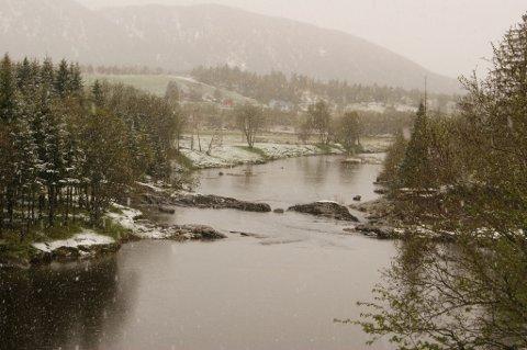 Dette bildet er tatt sør for for Nesna i Nordland, forteller Ohrvik.
