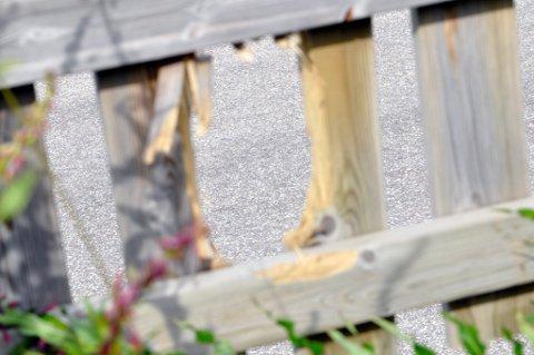 Gjerdet til Cato Eriksen fikk gjennomgå da steinene kom skytende. Foto: Mads A. Bjørkly
