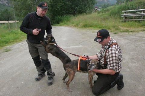 Remi Olsen (t.v.) har skarptrente bjørnehunder som søker. Her sammen med Andreas Diset ved en tidligere anledning.