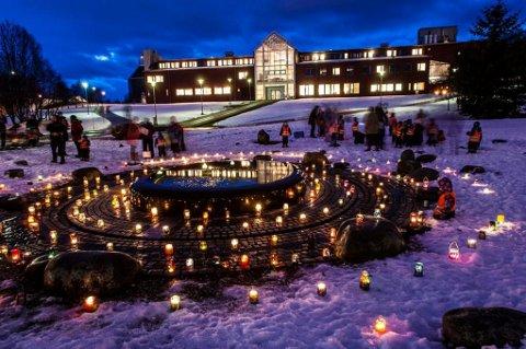 NY LEDELSE: Universitetet i Tromsø skal få ny ledelse. Om ei uke starter valget som avgjør hvem som blir ny rektor og hvem som blir nye prorektorer. Foto: Torbein Kvil Gamst, UiT