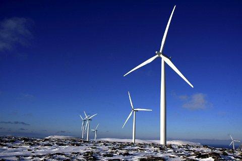 KRAFT TIL FINNMARK: Vindturbiner, som disse i Kjøllefjord, er planlagt på Hamnefjell i Båtsfjord. Hvordan de påvirker reinflokkene er uklart, men byggherre Finnmark Kraft og reinbeitedistrikt 7 er likevel enige om å jobbe sammen. Reinnæringa får erstatning for vanskelighetene turbinene kan føre med seg. Foto: Leif Y. Wallenius