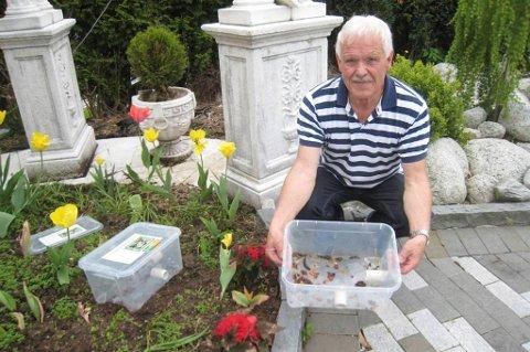 Pensjonisten Magne Skogland gikk, som mange andre, lei av alle brunsneglene i hagen. Men han gjorde noe med det.