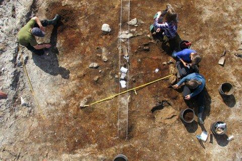 ILDSTED: Utgraverne ved Sandvika på Brensholmen har funnet spor etter det som kan være de første bøndene, fra 800 år før Kristus.