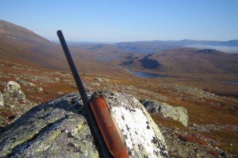 SKYTES FLEST I TROMS: Mens det er nedgang i store deler av hele landet, er Troms fortsatt det fylket hvor det felles flest ryper.