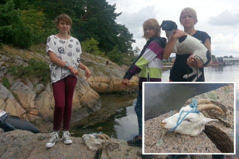 Ekkelt syn: Fra venstre: Maria Limi, Ida Ø. Olsen og Malena S.Limi (med hunden Lita). De tre jentene med hodet de fant da de skulle fiske i sjøen ved Oterøya i Larvik lørdag kveld.
