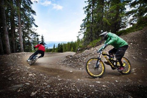 SKADEUTSATT: Hafjell Bike Park har 25 kilometer sykkelløyper i alle vanskelighetskategorier. Fra juni og ut september ble det kjørt 90.000 turer         i sykkelparken. Neste år arrangeres det VM i terrengsykling her.