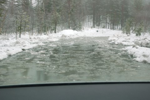 Hit, men ikke lenger.Dette var det som møtte oss da vi kjørte Presteveien mellom Egddalen og Vegårshei tirsdag formiddag. Her er det ingen skam å snu!  FOTO: Svein Walstad