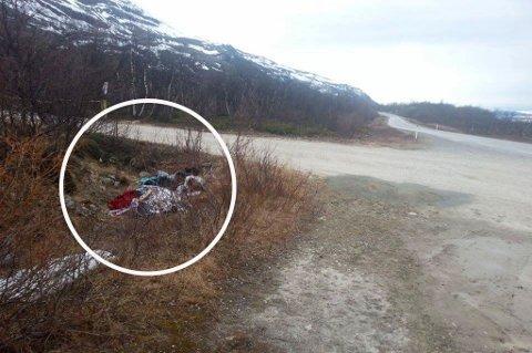 DUMPET: Her ble søppelet funnet, ikke langt fra E6.