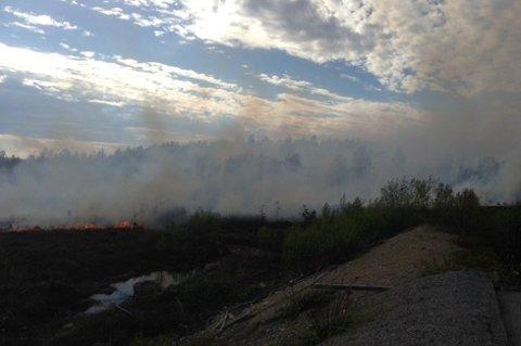 SPREDTE SEG MOT SKOGEN: Flammene kom under kontroll før de bet seg skikkelig fast i vegetasjonen. Bildet er tatt fra skytebanen.