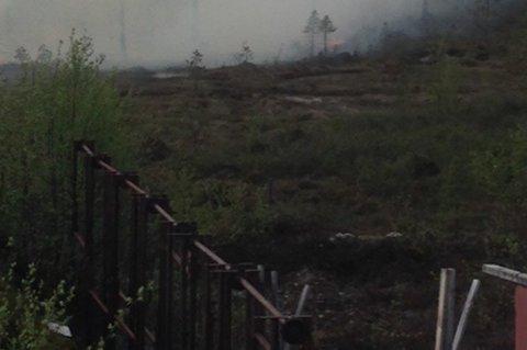 6 MÅL: Skogbrannen i Sør-Varanger svidde av seks mål og kom så nært bebygggelsen.