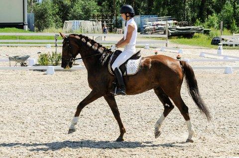 Hestens lydighet, smidighet i bevegelsene, fysikk, evner, og samspill mellom hest og rytter og rytters holdninger bedømmes.