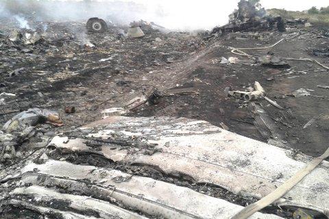 Vrakrester var spredt over et stort område etter at et Malaysia Airlines-fly ble skutt ned over ukrainsk luftrom torsdag.