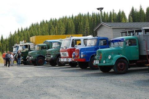 På rekke og rad under Veteranbiltreffet i Landåsbygda lørdag 26. juli.