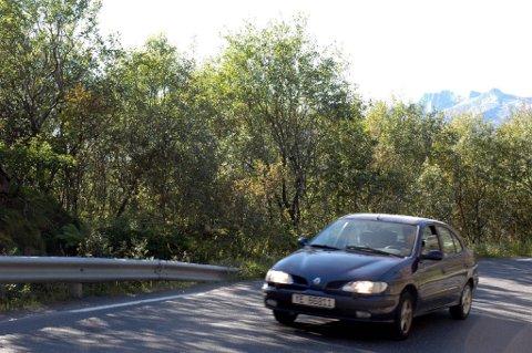 Gjengrodde lofotveier. Flere steder langs E10 blir det som å kjøre i en grønn tunnel. I flere år har turister klaget på den reduserte utsikten.