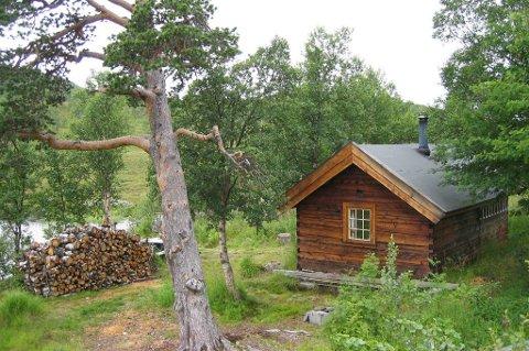 Denne skogskoie fra 1913 er i dag utleiehytte: Gærbethytta i Kvænangen, Troms. Du finner mange liknende over hele landet. De er flotte utgangspunkt for friluftsliv, jakt og fiske.