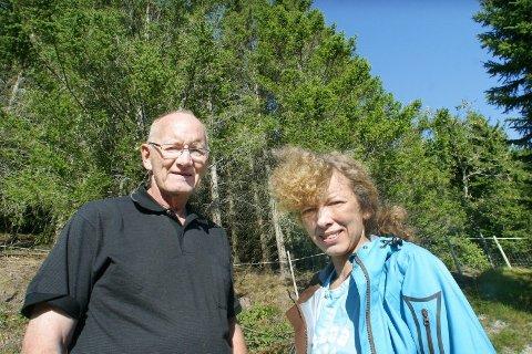 Skog. 900 mål skog står klar til hugging. Nå venter familien Olsen på skogsmaskinene.