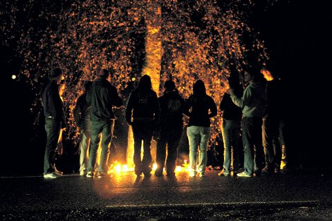 MINNESTUND: Samme kveld som ulykken skjedde, samlet venner seg rundt treet for å minnes. FOTO: LISBETH ANDRESEN