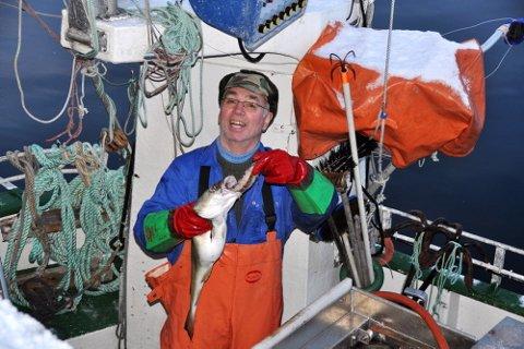 Fisken har gode dager utafor Bø i Vesterålen. Her viser Rolf Andersen på juksabåten ?Børingen?, en torsk som er full av sild.