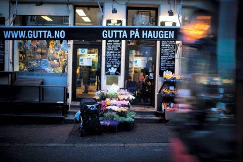 INSTITUSJON: Gutta på Haugen har satt sitt preg på St. Hanshaugen siden 1994.