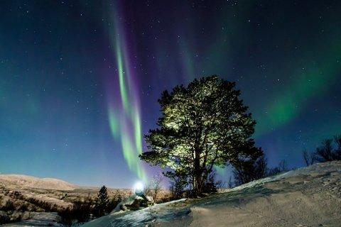 Foto: Rune Bjørkli