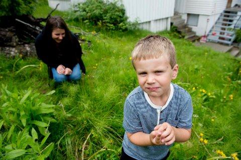 5 år gamle Noa Sundquist Jensen ble bitt i nakken av en flått. Til tross for mye skremselspropaganda rundt flåtten er ikke moren Anna skremt.