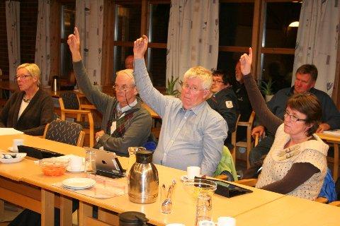 Arbeiderpartiets gruppe mente full utbygging er det beste. De tre representantene, Per Gunnar Bakken, Morten Nyhus og Ann Kristin Leistad Sandvik, fikk ikke flere med seg i det synet.