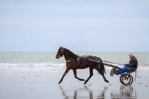HAVHESTEN: Tom Forkerud og Titou de Touchyvon der Normandies kystlinje er nær ved engelske Jersey. BILDER: EIRIK STENHAUG (EQUUS)