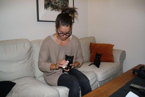 Kattungene er venter tålmodig i kø på frokosten av matmor, Victoria. Eller, tålmodige er de kanskje ikke - det går mye i mjauing og klatring opp buksebeinet.