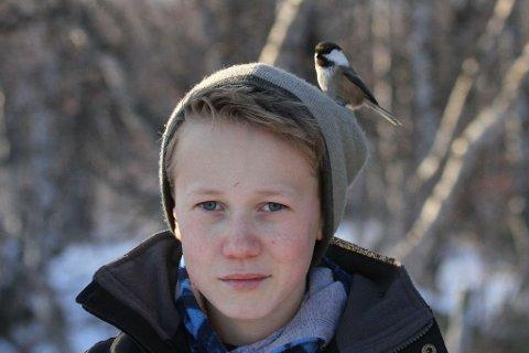 TILLITSFULL: Lappmeis er en fugl som ikke er folkesky. Her hopper den på lua til Skjalg-Helmer Vian.
