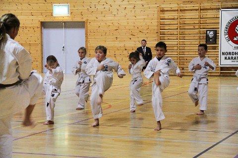 LURT: Condrad Nesse (8) meiner det er brå å trena karate, fordi han lært å blokkera slag.