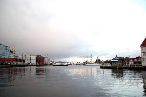 Under havoverflaten i Vågen skjuler det 240 tonn med giftige stoffer. Miljøgiftene har hopet seg opp over flere år, og må fjernes eller dekkes til for at de ikke skal spre seg videre i næringskjeden.