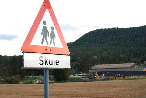 Dette skiltet har nynorsk tekst. Det fikk Venstres Rune Nikolaisen til å ta saken opp i kommunestyresalen - en helt naturlig demokratisk rett, mente flere representanter. Foto: Birger Moen