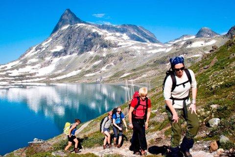 spreke deltakere: Vinjerock har et sprekt, ungt publikum der fjellvandring og vannsport er noe som engasjerer ni av ti deltakere. FOTO: VINJEROCK