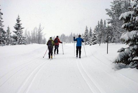 I deler av Telemark betyr ordet ski-låm skispor.