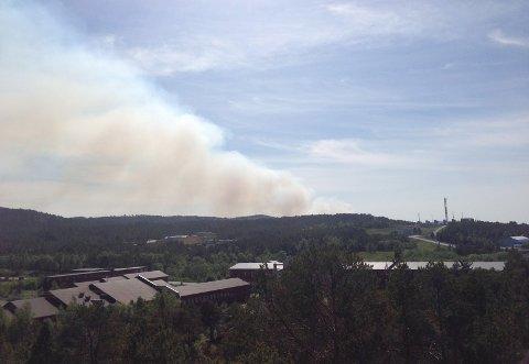 Røyken fra brannen på Skardsøya kan ses på lang avstand. Dette er tatt fra boligriggen på Tjeldbergodden klokka 15.40. Leserfoto: Fredrik Alnæs