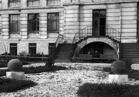 100 år: Zoologen Carl Dons? bilde fra 1914 viser de to kalksteinene på plenen foran inngangen til gamle Tromsø Museum ? i dag Tromsø kunstforening. Foto: Carl Dons