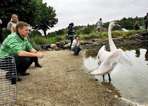 DØPTE OM: Miljøvernminister Erik Solheim døpte om knoppsvanen «Frøydis» til «Siv», noe hun takket for med å strekke seg i frihet etter en omgang i fuglevaskeriet.