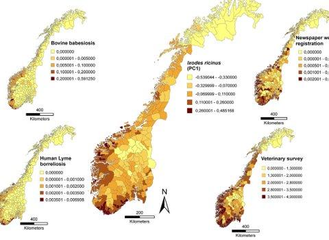 flått kart norge Telemarksavisa   Her florerer flåtten flått kart norge