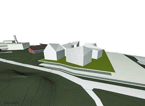 Mulighetsstudie: Larvik kommune har hatt møte med arkitektene bak mulighetsstudien. - Vi stusser litt over størrelsen, sier arealplanlegger Ingunn Baarnes.Illustrasjon: Various Architects