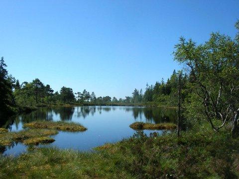 Det er naturskjønne områder en passerer på vei opp til Huldretoppene.