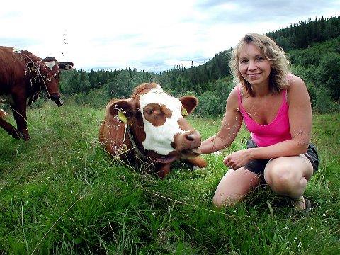 SATSER STORT: Jelena Langvatn har snart ei melkekvote på over 122.000 liter. Hun våger å satse i ei næring der mange gir opp. Men Jelena mener det ikke er lov til å lykkes med landbruk. Janteloven er sterk. Det bryr ikke kua Anna seg om. (Foto: Tor Martin Leines Nordaas)