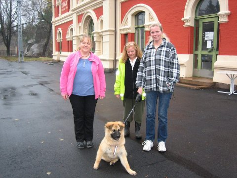 Berit Olsen, Anita Hetle med hunden Wanda og Gitte Romøren håper at NSB vil lytte til Kornsjø-folket og la toget stoppe for av- og påstigning ved behov.
