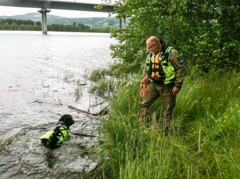 LETER: Per Olav Gundersen fra Norske Redningshunder leter langs Glomma med hunden Trulte i vannet.