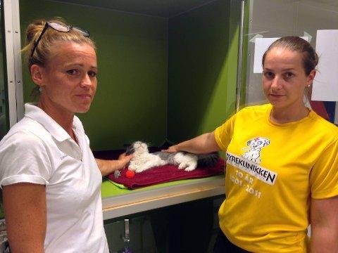 Veterinær Christa von Erpecom og dyrepleier Marie Skare Furuseth får vondt at hva mennesker får seg til å gjøre mot forsvarsløse dyr.